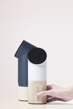 Bamboo Speakers and Hair Dryers Win Acclaim 5