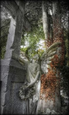 Angel - Protestantischen Friedhof in Augsburg. Cemetery Angels, Cemetery Statues, Cemetery Art, Cemetery Monuments, Angels Among Us, Angels And Demons, Old Cemeteries, Graveyards, Last Exile