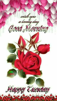Have a great day yall morning pinterest morning greetings days of week morning messages morning quotes morning blessings good morning good night morning images morning glories mornings tuesday m4hsunfo