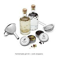 Homemade Gin Kit -- niece or hubs or brother