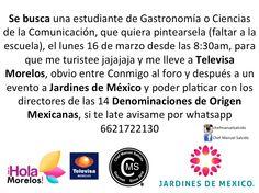 Se busca una estudiante de Gastronomía o Comunicación, que quiera pintearsela, el lunes 16 de marzo desde las 8:30am, para que me turistee jajajaja y me lleve a Televisa Morelos, obvio entre Conmigo al foro y después a Jardines de México y poder platicar con los dir de las 14 Denominaciones de Origen Mexicanas, avisame por whatsapp 6621722130, bv!!, #chefcms #Cuernavaca #UVM #IFRA #Corbuse #televisamorelos #televisa #denominacióndeorigen #México #chef…