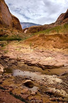 Rainbow Bridge, Lake Powell, Utah - I have to tell you that this photo won a contest the National Parks Services held, and they use it there at the Rainbow Bridge visitor's center, and around the area. Photo credit: Jack Quintero (my husband) Colorado Plateau, Colorado River, What A Beautiful World, Beautiful Places, Glen Canyon Dam, Lake Powell, Sierra Nevada, Rainbow Bridge, Earth Tones