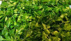 Μαϊντανός: διατήρηση στην κατάψυξη για μήνες! - cretangastronomy.gr Food Hacks, Food Tips, Greek Recipes, Parsley, Frozen, Herbs, Food Stamps, Greek Food Recipes, Herb