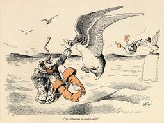 The albatross is most unfair