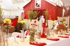 Farm Inspired Birthday Party