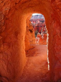 bryce canyon, utah by isabella
