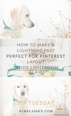 today I'm going to show you how to make a super-quick layout inside the Lightroom print module. This is perfect for pinterest, and social media sharing.
