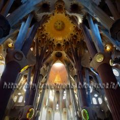 TinyTravelTreats : The Enchanted Forest of the Beautiful Mind - Gaudi...