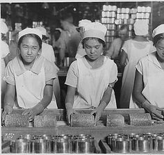 Working At The Cannery 1928. Hawaii's once-famous pineapple export industry. P.S. I'm the one who sharpened all those knives!!