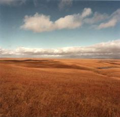 Beautiful prairie.