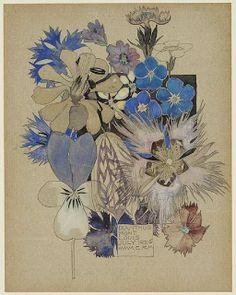 not on a postcard: Dianthus, Mont-Louis, July 1925