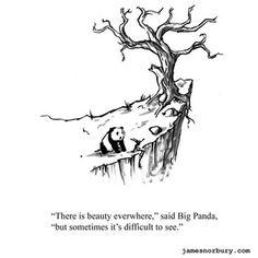 Big Panda, Little Panda, Bored Panda, Tiny Dragon, Little Dragon, Funny Animal Videos, Funny Animals, Introvert Vs Extrovert, Feeling Used Quotes