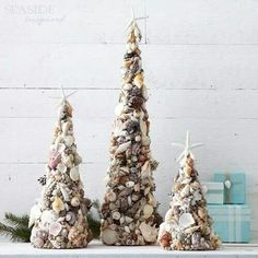 Shells decor - Schelpen decoratie