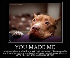 This says it all, Its not the Pittbulls fault its the humans that breed one after another ,and treat it like its nothing.  But it isn't nothing, its a living thing like us.   Judge the humans for their sake.  If u LOVE pittbulls then repost this picture.  Show u Care.  ~Avery's Sayings