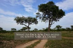 What to pack for Two weeks in South Africa + Safari