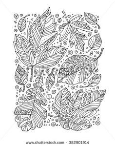 Forest leaves art background, maple, oak. Vector. Hand drawn artwork. Set collection. Bohemia concept for invitation card, ticket, branding, logo, label. Coloring book page for adult. Black, white
