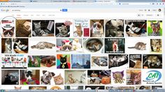 "For the record, the Direct Marketing July 2013 cover comes up first when you do a Google image search for ""cat marketing."" Yes! #cats #marketing"