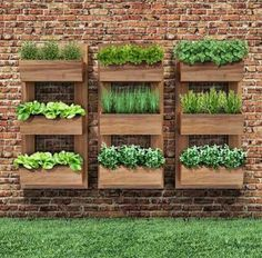 Vertical Gardens - Once you've designed your garden, pick the plants that you want to grow during each season. There's no better solution than to bring a vertical garden. While arranging a vertical garden…