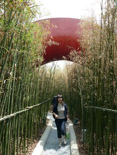 Garden of 10,000 Bridges by West 8 « Landezine | Landscape Architecture Works