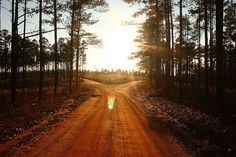Country Road Pictures, Photos, and Images for Facebook, Tumblr, Pinterest, and Twitter