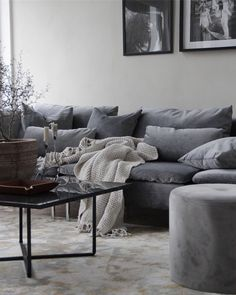 White Living Room Furniture Nooks Home Furniture Logo Living Room Sofa, Home Living Room, Living Room Furniture, Living Room Decor, Dark Grey Sofa Living Room Ideas, Grey Sofa Decor, Söderhamn Sofa, Cosy Sofa, Small Living Room Design