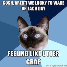 So, so lucky. :-(