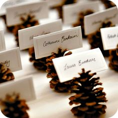 New wedding winter pine cones place cards 20 Ideas Christmas Wedding, Fall Wedding, Christmas Time, Rustic Wedding, Christmas Crafts, Elegant Wedding, Xmas, Trendy Wedding, Cottage Wedding