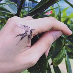 Classic Swallow and Delicate Temporary Tattoo Sticker