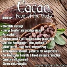 Cacao - NOT cocoa. Cacao is healthier for you. Uses and Benefits of Cacao Herbal Remedies, Natural Remedies, Health Tips, Health And Wellness, Nutrition Tips, Shiatsu, Le Cacao, Coconut Health Benefits, Fruit Benefits