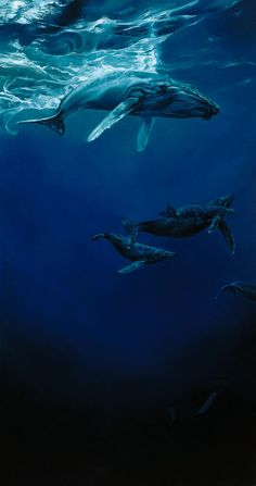 Whalesong Heather Theurer