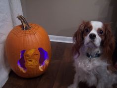 Charlie The Cavalier : Dog Stencil Pumpkin Carving- How Martha Stewarty is this?