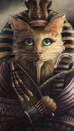 Animal Dress Up, Egyptian Cats, Animal Heads, Whimsical Art, Cat Love, Cat Art, Fantasy Art, Cool Pictures, Cute Animals