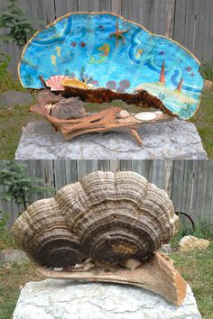 Shelf or Artist Fungus, found in northern Minnesota. Largest one I've ever seen. Tree Mushrooms, Stuffed Mushrooms, Tree Shelf, Mushroom Art, Nature Crafts, Pyrography, Fungi, Hobbit, Troll