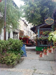 I ate a fantastic Serbian meal at this restaurant. It was in the heart of a very bohemian district called Skadarlija. - Belgrade, Serbia