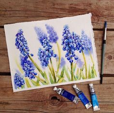 Blue watercolour Lavender