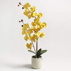 This highly realistic ochre orchid is the perfect way to brighten up any room. Presented in a stylish grey pot, with a modern design, this orchid would be ideal for displaying on shelves, sideboards and tables. Cloth Flowers, Silk Flowers, Cream Bedrooms, Cocktail Chair, Artificial Orchids, Touch Lamp, Mirror Wall Art, Types Of Flowers, Cleaning Wipes