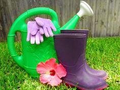 5 consigli per annaffiare l'orto in estate senza sprecare acqua    blog.greenme.it/radici/annaffiare-orto-estate/