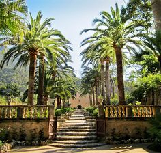 A branch of the international Mediterranean Garden Society, a forum for people interested in the plants and landscapes of the world's five mediterranean climates.