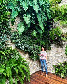 Jardim Vertical by Talita Gutierrez Garden Wall Designs, Garden Design, Landscape Architecture, Landscape Design, Jardim Vertical Diy, Vertikal Garden, Townhouse Garden, Indoor Water Garden, Vertical Garden Wall