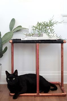 DIY Hall Of Fame: 13 Projects For The Weekend #refinery29  http://www.refinery29.com/best-diy-projects#slide13  Copper-Pipe Side Table  Get on the copper-accessories trend with this Alexander Wang-esque copper-side-table project by Emily Henderson.