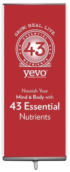 Yevo Orange Logo - Banners