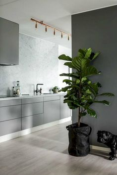 10 Cheap And Easy Cool Tips: Modern Minimalist Bedroom Decor minimalist kitchen white black cabinets.Modern Minimalist Kitchen Herringbone Floors minimalist home architecture stairs. Light Grey Kitchens, Cool Kitchens, Gray Kitchens, Minimalist Kitchen, Minimalist Decor, Minimalist Living, Minimalist Bedroom, Minimalist Interior, Modern Minimalist