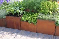 cortin+steel+planter+boxes