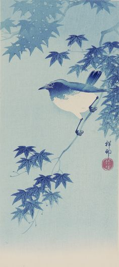 """Blue Robin on Maple"" de Ohara Koson (1877-1945) artiste japonais."