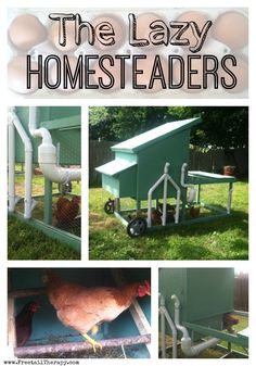 Building a Chicken Coop Lazy Homesteading? Building a chicken coop does not have to be tricky nor does it have to set you back a ton of scratch. Chicken Coop Decor, Mobile Chicken Coop, Easy Chicken Coop, Diy Chicken Coop Plans, Building A Chicken Coop, Farm Plans, Chicken Tractors, Raising Chickens, Chickens Backyard
