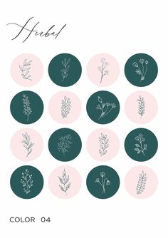 Instagram Feed, Instagram Story, Flower Background Wallpaper, Flower Backgrounds, Flower Graphic Design, Insta Icon, Story Highlights, Rainbow Highlights, Journal Stickers