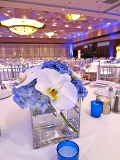 Blue & White Modern Wedding Centerpieces with Hydrangea and Phaelenopsis Orchids by Life in Bloom