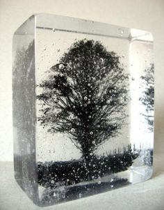 Image embedded in cast glass - lovely!