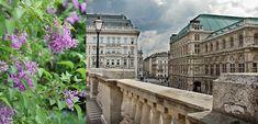 Wien · Stampsy