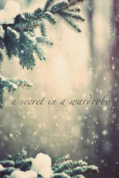 narnia...my dream... i need a secret wardrobe!